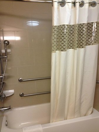 Hampton Inn & Suites Edmonton/West: Tub