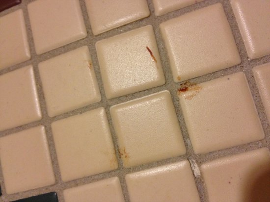Villas at Disney's Wilderness Lodge: Blood smears on the bathroom floor!!