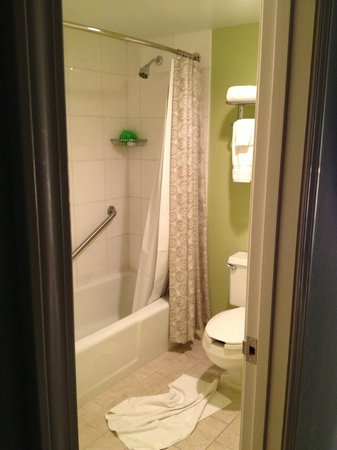 The Roberts Mayfair: Rm 1101 - Bathroom