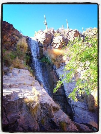 Loews Ventana Canyon Resort: Waterfall...