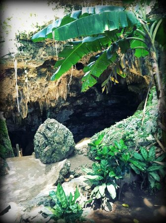Dreams Punta Cana: Cave we encountered on our dune buggy excursion
