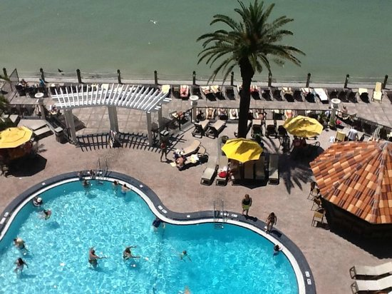 ‪‪Holiday Inn Hotel & Suites Clearwater Beach‬: pool view from our room‬