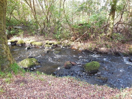 Oughterard, Ireland: Running stream