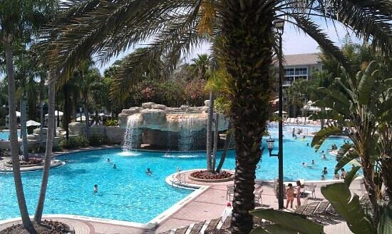Sheraton Vistana Resort - Lake Buena Vista: main pool!