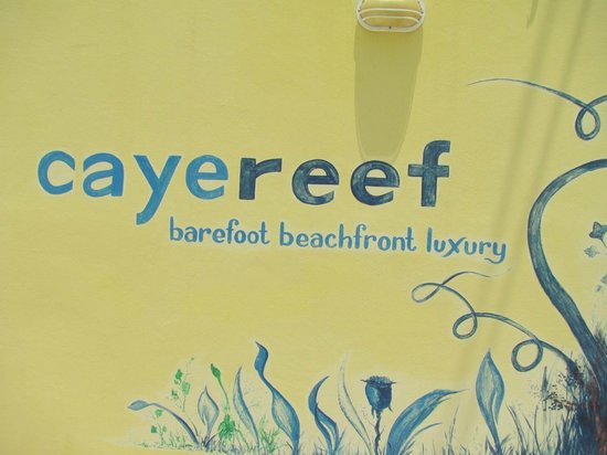 CayeReef: Next To Front Door