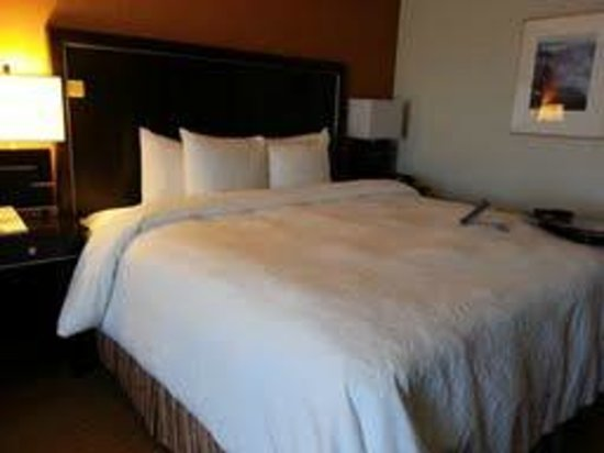 Hampton Inn Portland Airport: King Room