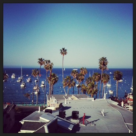 The Avalon Hotel on Catalina Island: From the rooftop deck at The Avalon Hotel