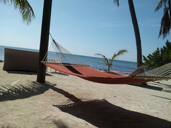 Long Key, : Hammock