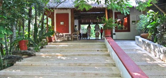 Las Palapas Hotel: On your way to the lobby.