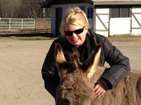 ‪‪Milford‬, بنسيلفانيا: With BoBo the Donkey‬