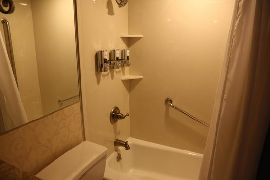 Four Points By Sheraton French Quarter: great bath and shower