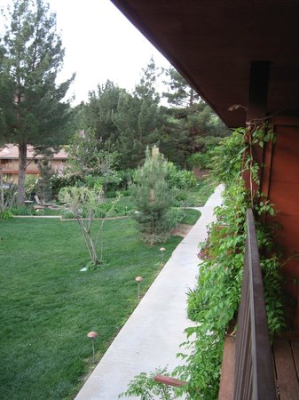 Cliffrose Lodge & Gardens: Hummingbirds abound outside your door