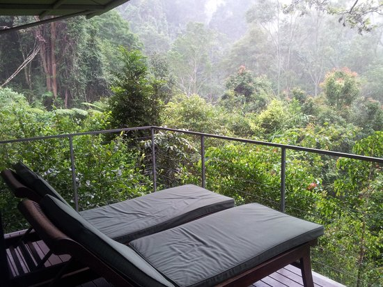 Crystal Creek Rainforest Retreat照片