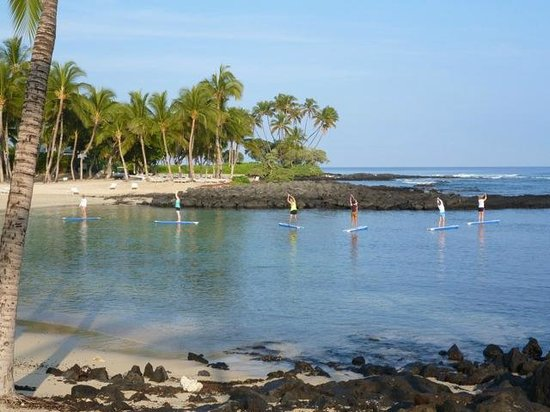 The Fairmont Orchid, Hawaii: Paddle board yoga early morning