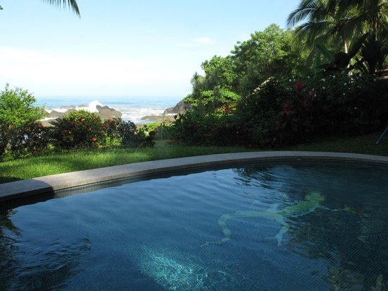 Costa Paraiso: View from the pool