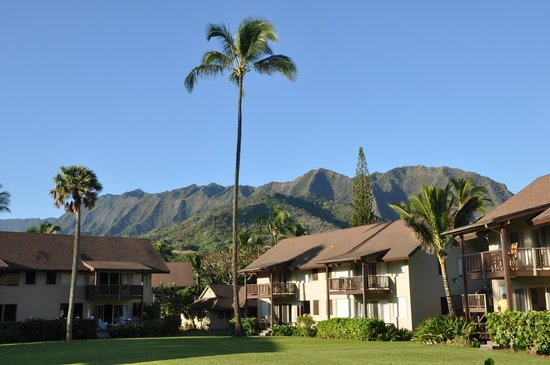 Hanalei Colony Resort: View from our courtyard