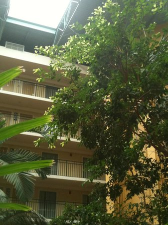 Embassy Suites Orlando/Lake Buena Vista Resort: El hotel por dentro