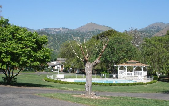 Three Rivers, CA: Pool and grounds