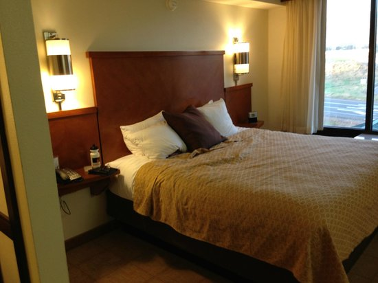 Hyatt Place Fremont/Silicon Valley: king size bed