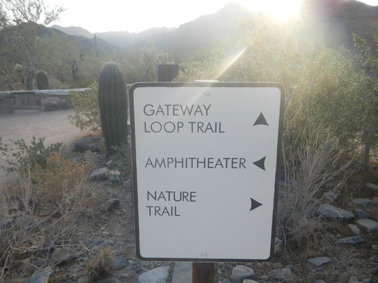 McDowell Sonoran Preserve: start of the loop