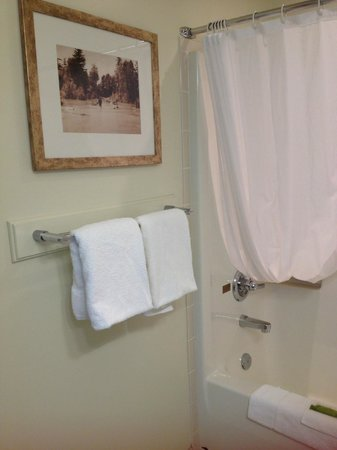 Harrison Beach Hotel: the bathroom
