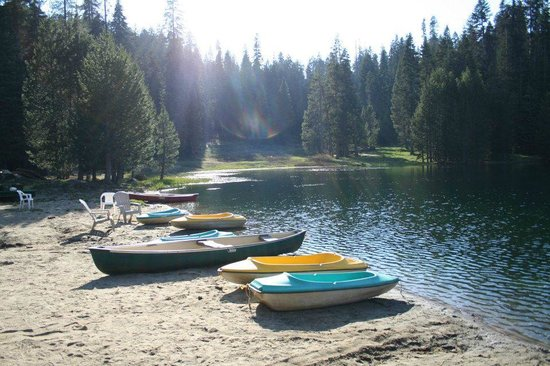 Montecito Sequoia Lodge: Montecito Lake