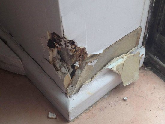 Whitsunday Terraces Resort: Damaged wall in living room