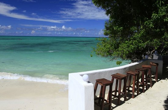 Red Monkey Beach Lodge: view from bar