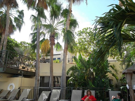 Crowne Plaza Key West La Concha : pool area 