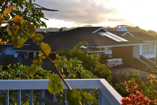 Kalaheo, HI: View from the lanai