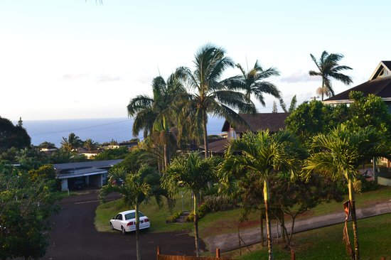 Kalaheo, Hawái: View from the lanai