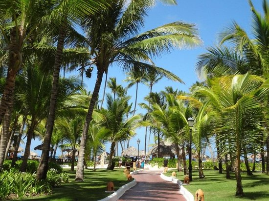 Occidental Grand Punta Cana: Let&#39;s go to the beach, beach!