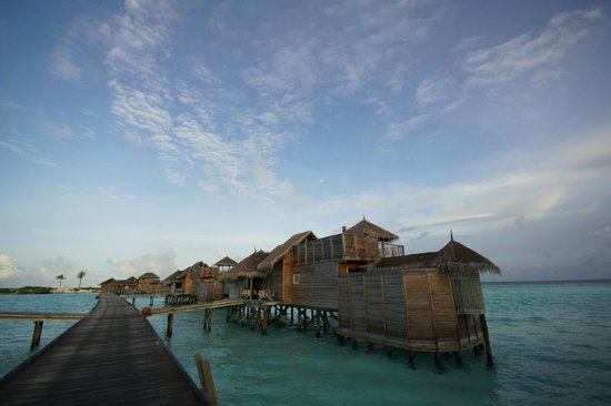 Gili Lankanfushi Maldives: 