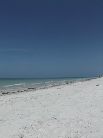 Redington Beach, FL: beach