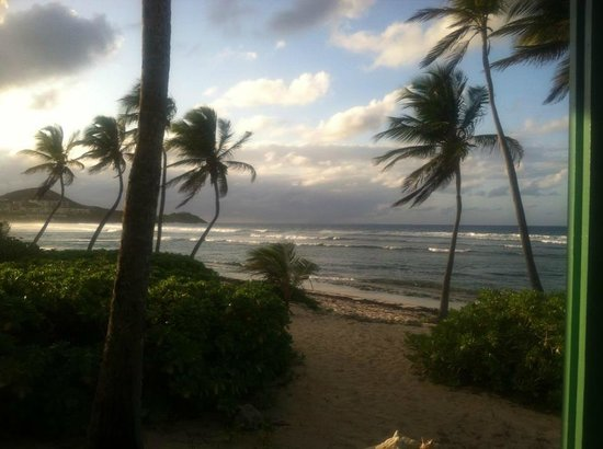 The Palms at Pelican Cove: View from room