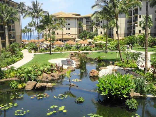The Westin Kaanapali Ocean Resort Villas: pond