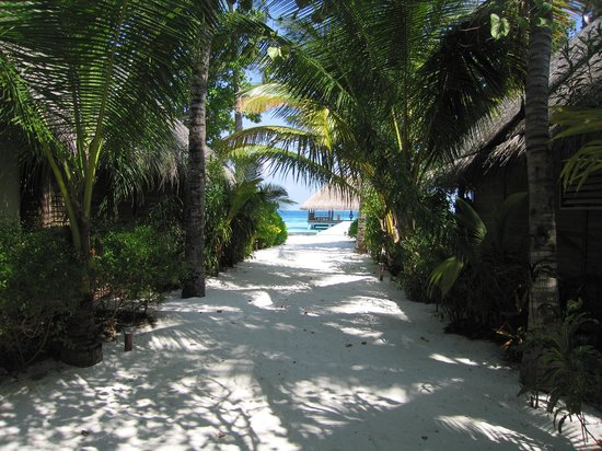 Constance Moofushi: walking on the island