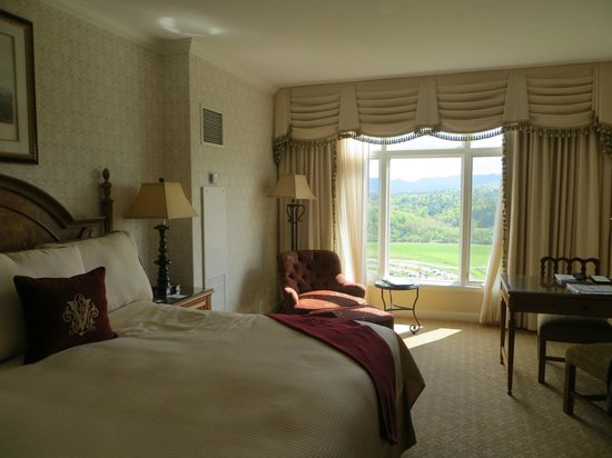 Inn on Biltmore Estate: A room with a view--7th floor--and it was one of the less expensive rooms!
