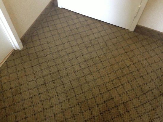 Holiday Inn Express Nashville Downtown: Hard to see in picture, Red stains all over the carpet from the door to the bathroom!