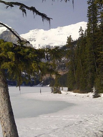 Fairmont Chateau Lake Louise: Along the path