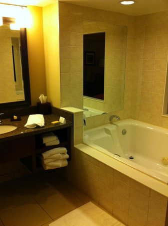 Marriott Niagara Falls Fallsview Hotel & Spa: bathroom
