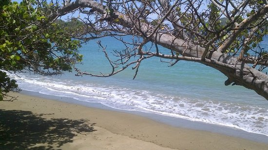 Speyside, Tobago: scenic view