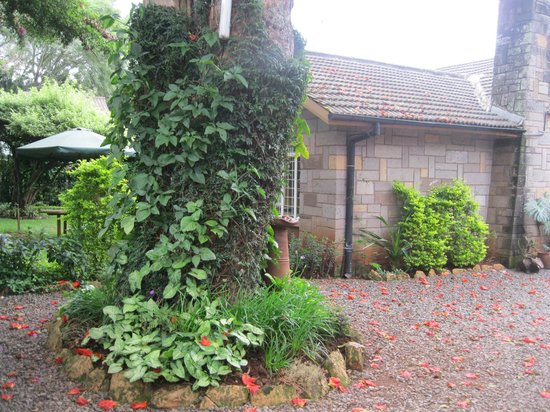 Sandavy Guest House Bed and Breakfast: lovely garden areas