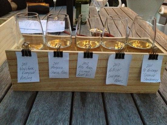 Martinborough, Yeni Zelanda: Selection of local white wines to taste.