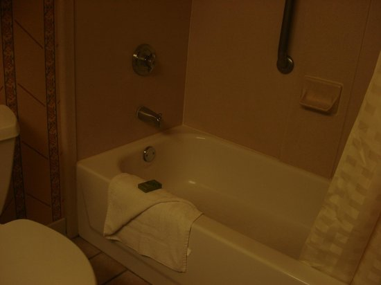 Embassy Suites Omaha Downtown/Old Market: Shower/tub