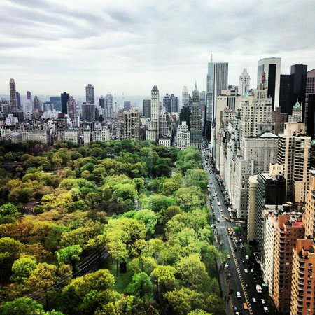 Mandarin Oriental, New York : central park view room 