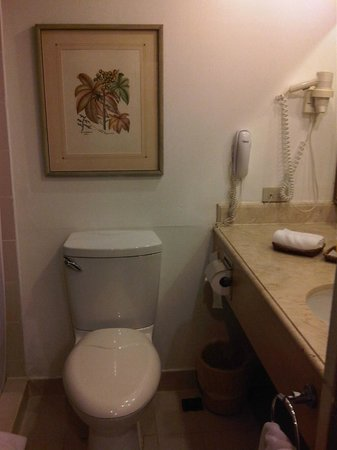Waterfront Insular Hotel Davao: Clean toilet