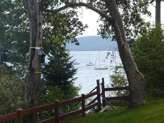 Mill Bay, Canada: View from the front door!