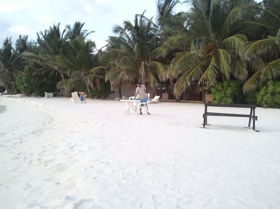 Summer Island Village: zakariyya