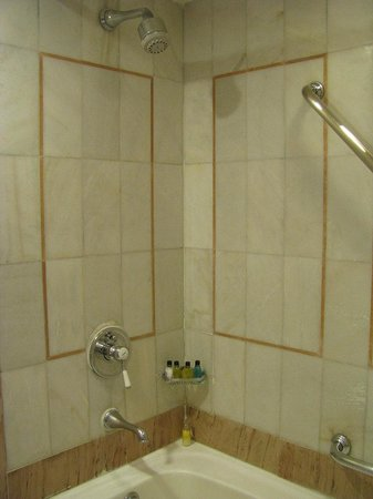ITC Kakatiya: Shower stall